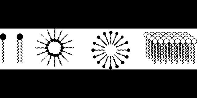 micelas definicion